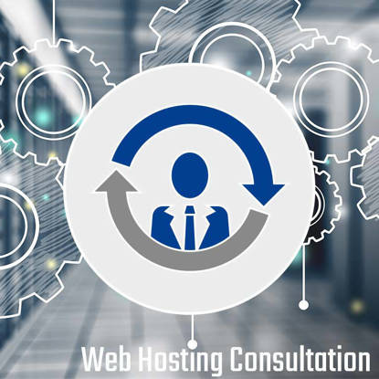 Web Hosting Consultation